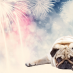 dog firework anxiety